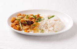 Orange chicken and rice Stock Images