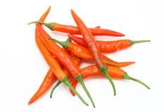 Orange chilies Stock Photos
