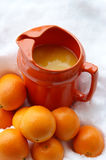 Orange Chill. Nature's Medicine - a healthy dose of Vitamin C in an attractive orange pitcher chills in the snow Royalty Free Stock Photo