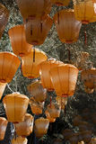 Orange Chinese Lanterns. Chinese lanterns hanging from a tree. They are orange in color and have been put up for Chinese New Year stock photo