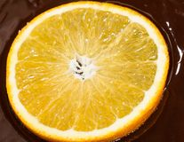 Orange in chocolate Stock Images
