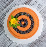 Orange chocolate velour cake with flowers, blueberries and basil Stock Photography