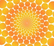 Orange circles. Royalty Free Stock Image