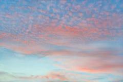 Orange clouds in azure sky. Orange cirrocumulus clouds in azure sky royalty free stock image