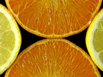 Orange and citron Stock Photos