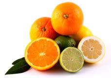 Orange citron och limefrukt fotografering för bildbyråer