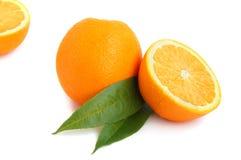Orange Citrus Stock Images