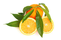Orange Citrus Royalty Free Stock Photography