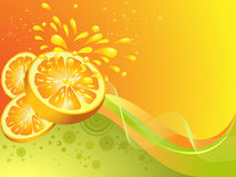 Orange citrus fruit. Vector illustration Stock Photos