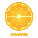 Orange citrus fruit. Healthy vegan food vector illustration Royalty Free Stock Photos