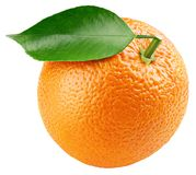 Orange citrus fruit with leaf isolated on white stock photography