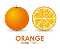 Orange citrus fruit Stock Images