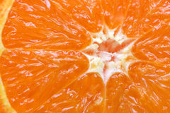 Orange citrus fruit section Royalty Free Stock Photography