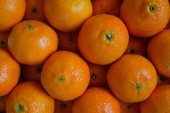 Orange citrus fruits clementine Royalty Free Stock Photo