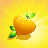 Orange citrus fruits in the form of heart Stock Photos
