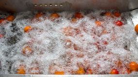 Orange cleaning process Stock Photos