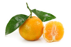 Orange clementine. Isolated on white background royalty free stock photography
