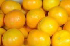 Orange clementines royaltyfri bild