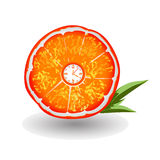 Orange Clock. Fresh Juicy Orange Clock Vector Stock Photo