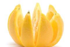 Orange close up royalty free stock image