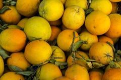 Orange close up. Ripe sweet and juicy orange close up Stock Photography