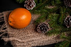 Orange close-up, an orange on a sacking,. Bumps, sackcloth, christmas, fir Royalty Free Stock Photos