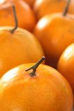 Orange closeup Royalty Free Stock Photos