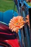 Orange cloth flower Royalty Free Stock Image