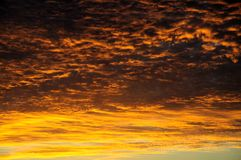 Orange clouds at sunset. Stock Photo