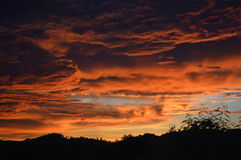 Orange clouds at sunset. Stock Photography