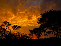 Orange and cloudy sky after the storm , Kruger, South Africa Stock Photo
