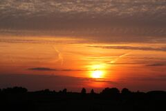 Orange Cloudy Sunset over Tree Silhouettes Royalty Free Stock Photography