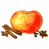 Orange, cloves,cinnamon and anise Royalty Free Stock Photo