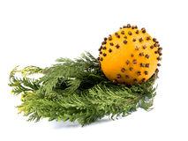 Orange with cloves and thuja branches Stock Photos