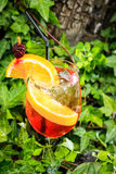 Orange cocktail drink Royalty Free Stock Photography