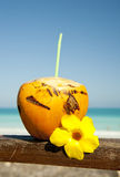 Orange coconut on the beach Stock Photography