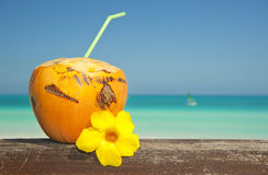 Orange coconut on the beach Stock Images