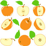 Orange color apples slices, collection of  illustrations Royalty Free Stock Photos