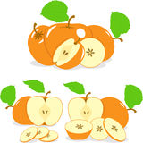 Orange color apples slices, collection of  illustrations Royalty Free Stock Image