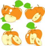 Orange color apples slices, collection of  illustrations Royalty Free Stock Photography