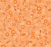 Orange color flowers. Stock Image