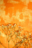 Orange color painted paper and dried flowers Stock Photography
