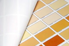 Orange color swatches Stock Images