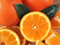 Orange composition Stock Photos