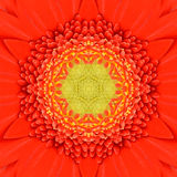 Orange Concentric Flower Center Mandala Kaleidoscopic design Stock Photography