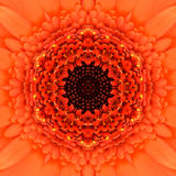 Orange Concentric Flower Center. Mandala Kaleidoscopic design Stock Photos