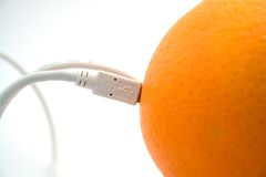 The orange connected through cable 2 Royalty Free Stock Images