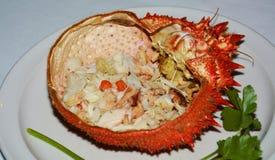 Orange crab fish background Stock Photo