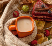 An orange cup of milk tea, a beige knitted scarf, a piece of apetizing cake with blueberries, dry tree leaves, hips and chestnuts Stock Photos