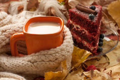 An orange cup of milk tea, a beige knitted scarf, a piece of apetizing cake with blueberries, dry tree leaves, hips and chestnuts Stock Image
